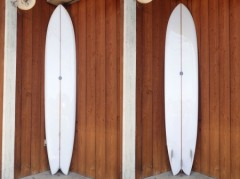Fish Simmons 9'10""
