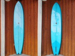 Swallow Tail 9'6""