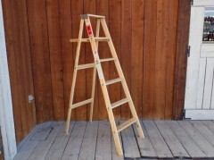 Michigan Ladder 6ft